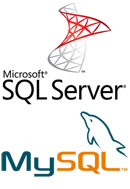 MS SQL SERVER / MySQL